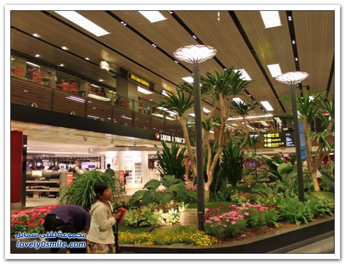 مطار شانغي الدولي في سنغافورة
