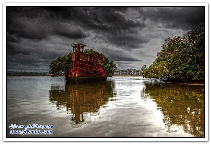 غابات المانغروف العائمة على سفينة بالقرب من سيدني