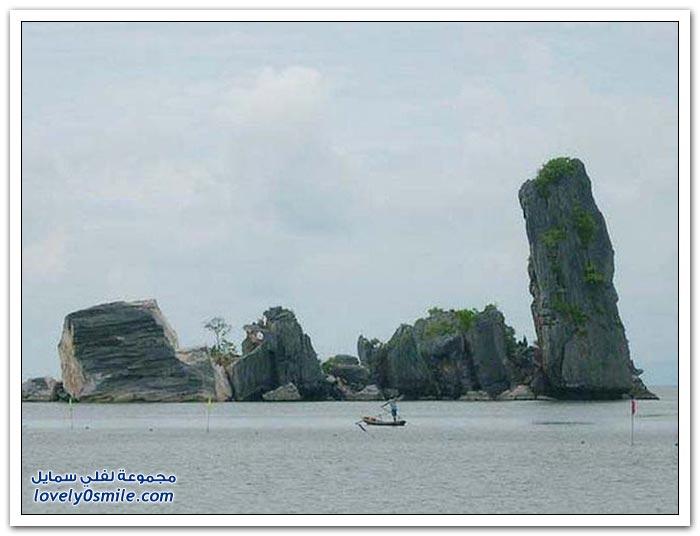 صور من الطبيعة في فيتنام
