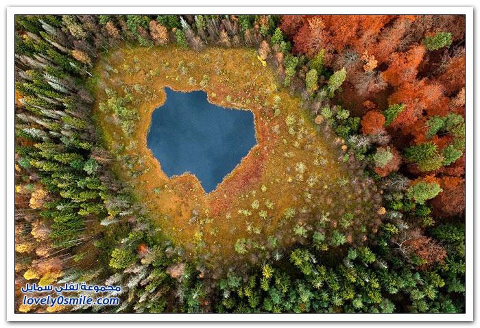 صور جوية لغابات لكاسبر كوالسكي في بولندا في الخريف