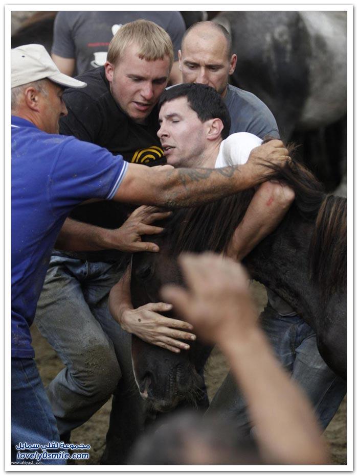 مهرجان رابا داس بشتاش لترويض الخيول البرية في أسبانيا