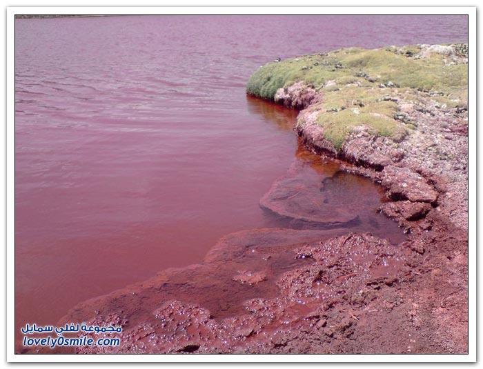 البحيرة الحمراء الغامضة في دولة تشيلي