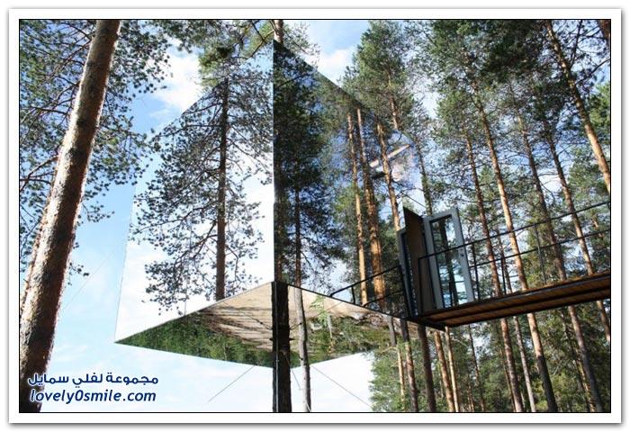 عشرة فنادق رائعة فوق الأشجار