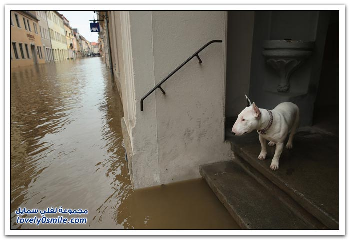 الفيضانات مع بداية الصيف في أوروبا