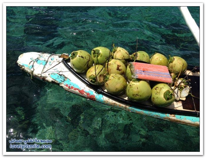 بوراكاي ملكة الجزر حول العالم