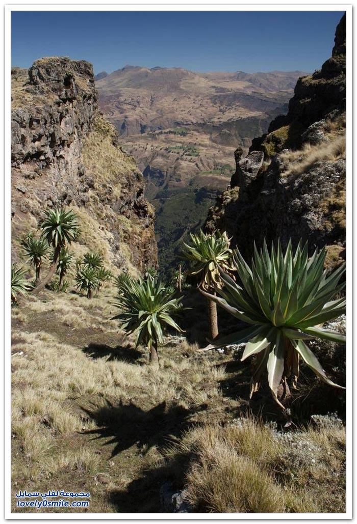 صور رائعة من المرتفعات الإثيوبية