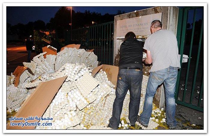 فرنسيون يلقون 100 ألف بيضة أمام مكتب ضريبي