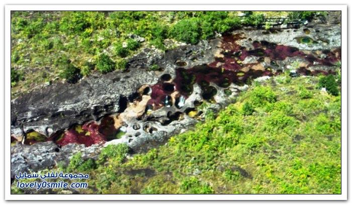 صور نهر الألوان الخمسة في كولومبيا