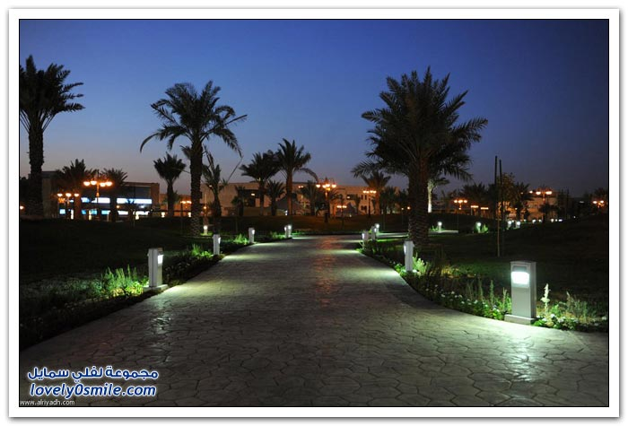 منتزه الملك عبدالله بحي الملز