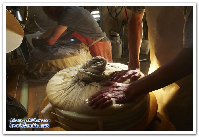 تصنيع الجبن في الريف السويسري