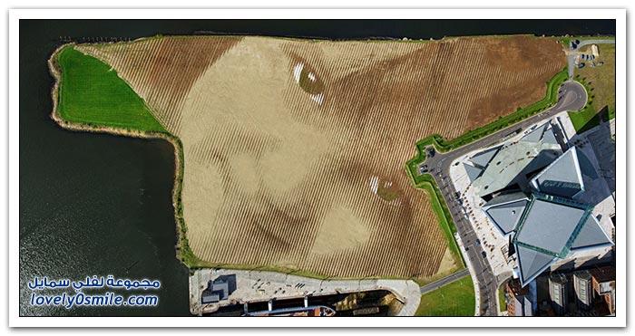 صورة بمقاس 45 ألف متر مربع