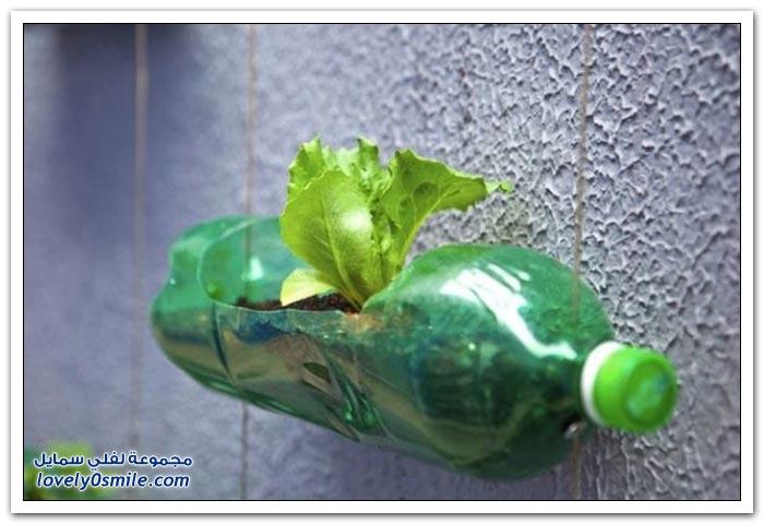 إعادة تدوير الزجاجات الفارغة