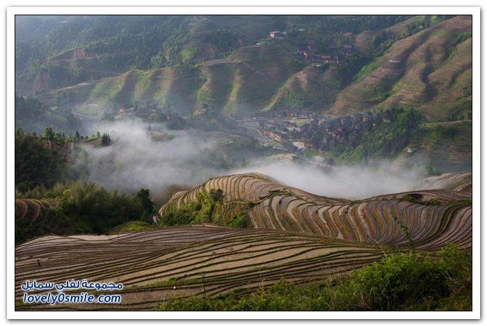 مدرّجات الأرز في Longshen في الصين