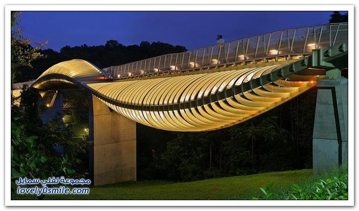 جسر هندرسون وايف في سنغافورة