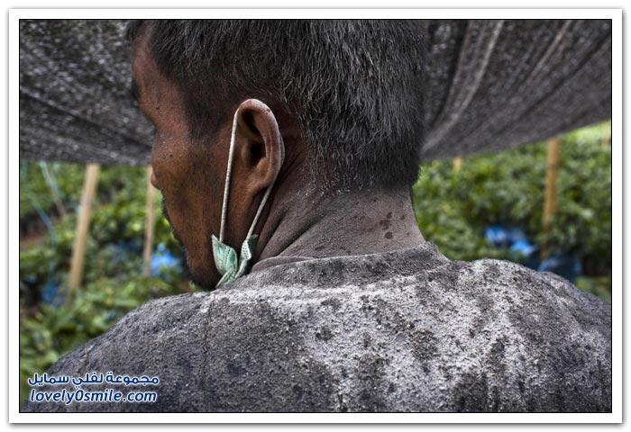 صور لنشاط وثوران البراكين لعام 2013م