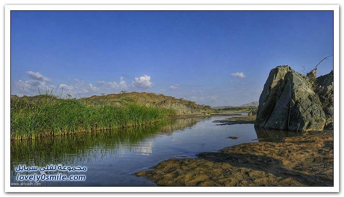 وادي عليب بالباحة