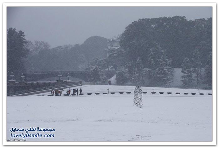 عاصفة ثلجية تجتاح اليابان