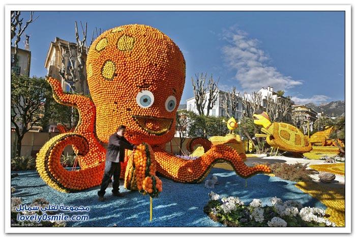 مهرجان الليمون والبرتقال