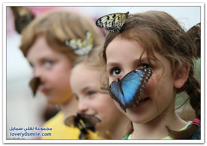 دار الفراشات في لندن