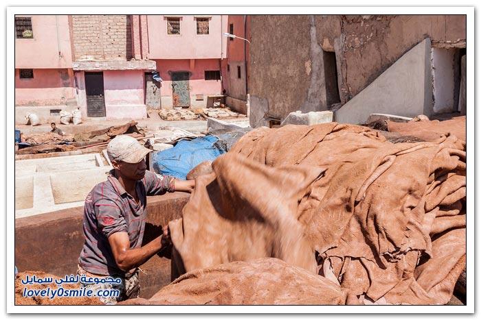 دبغ الجلود في المغرب