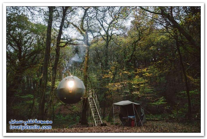 خيمة على شكل كرة معلقة على شجرة