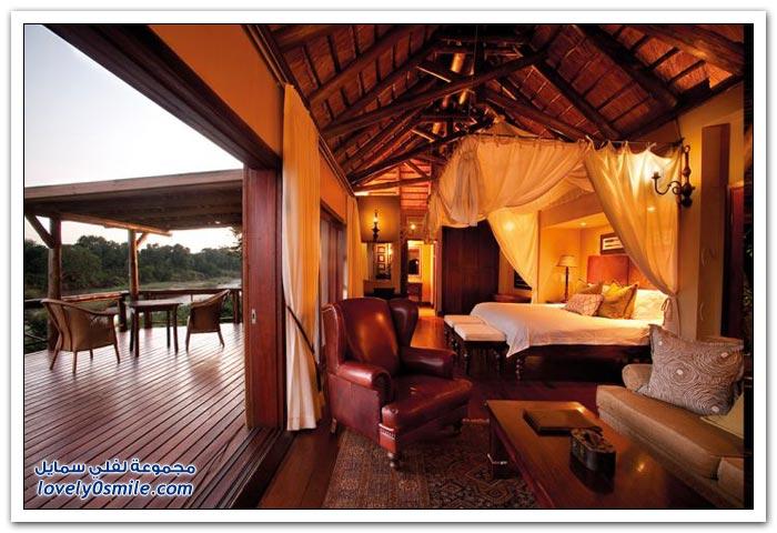 فندق فريد في جنوب أفريقيا
