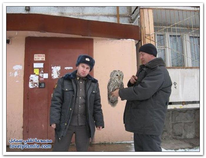 فقط في روسيا ج16