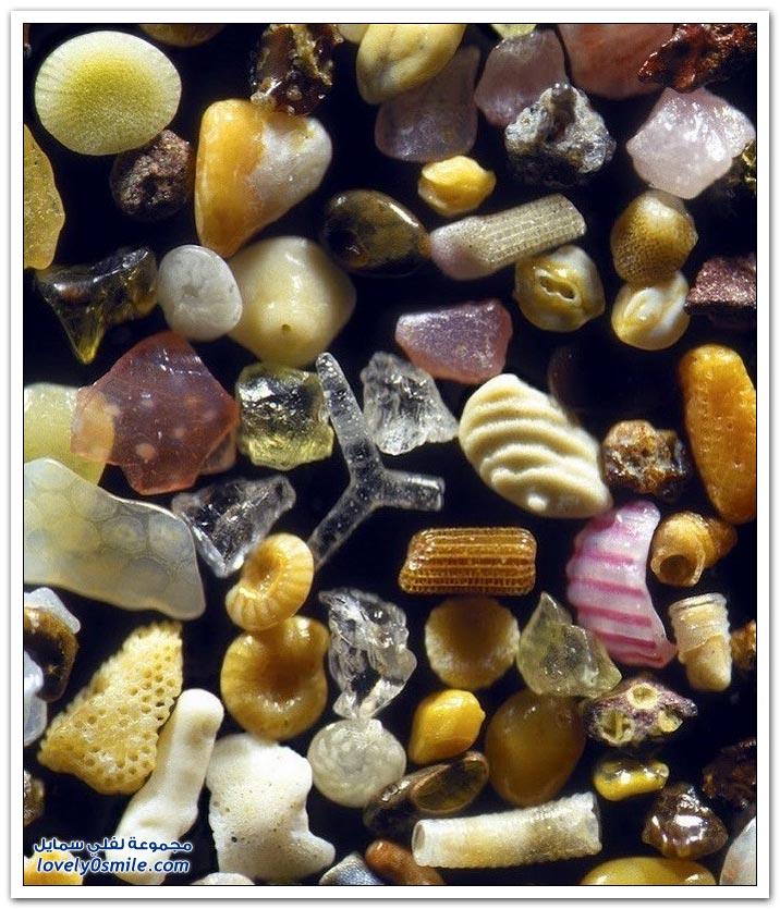 أشكال عجيبة للرمل تحت المجهر