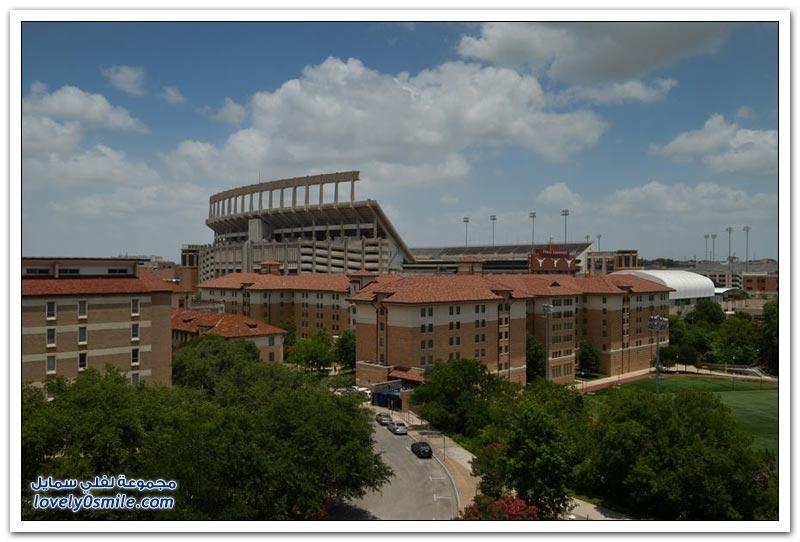جامعة تكساس