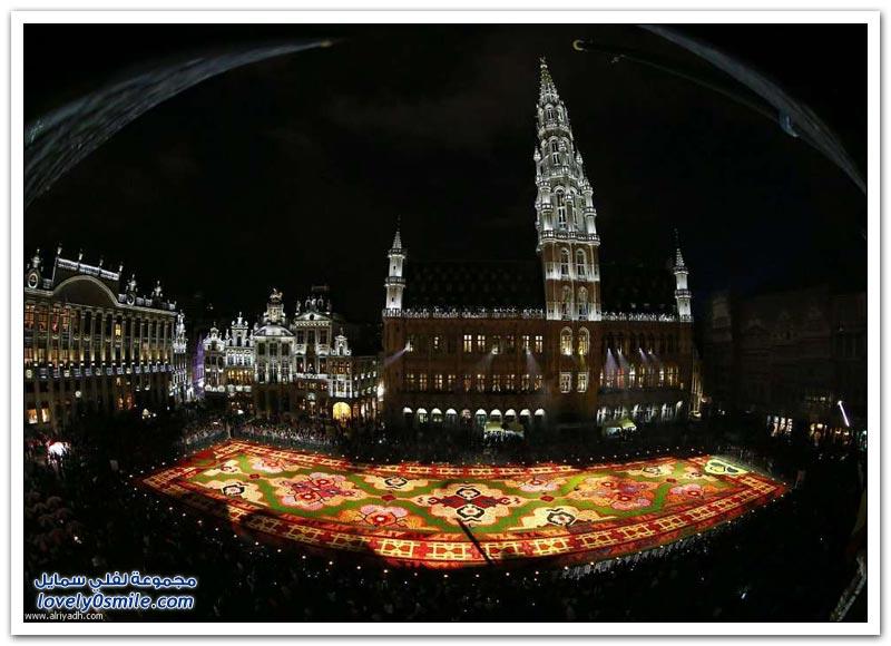 مهرجان الزهور في بروكسل