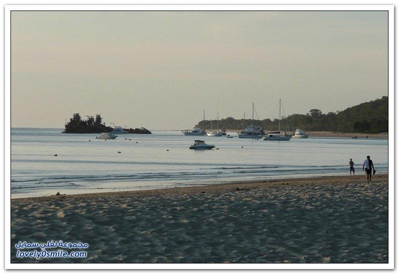 موريتون جزيرة السفن الغارقة