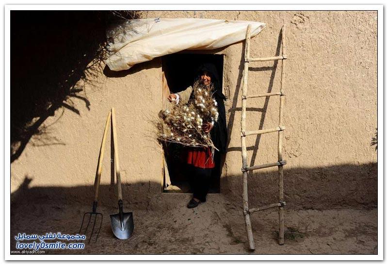 الحرير الأفغاني