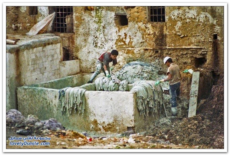 مدابغ الجلود في مدينة فاس، المغرب