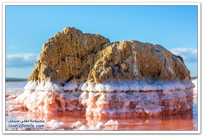 بحيرة الملح في شبه جزيرة القرم