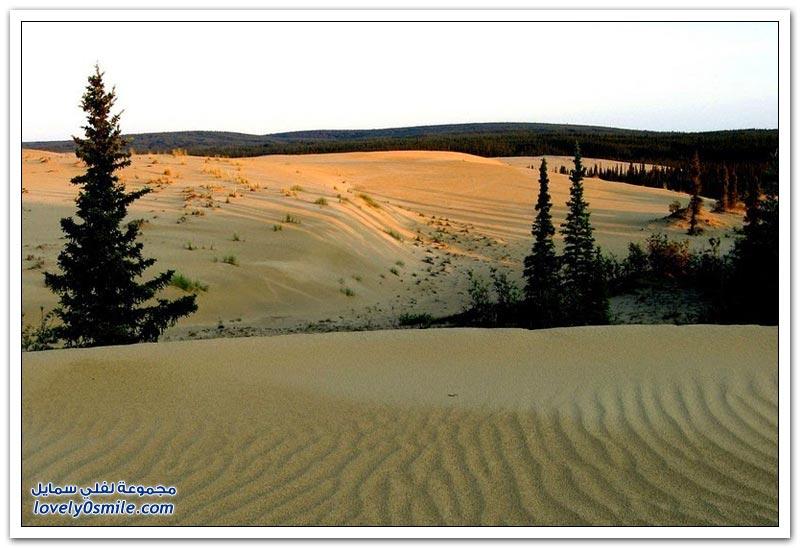الكثبان الرملية لحديقة وادي كوبوك الوطنية في ألاسكا