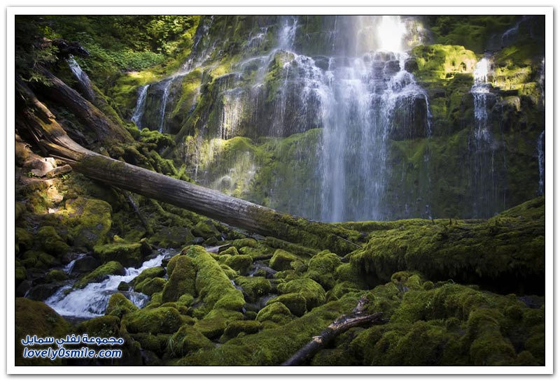 الطبيعة الرائعة في الولايات المتحدة