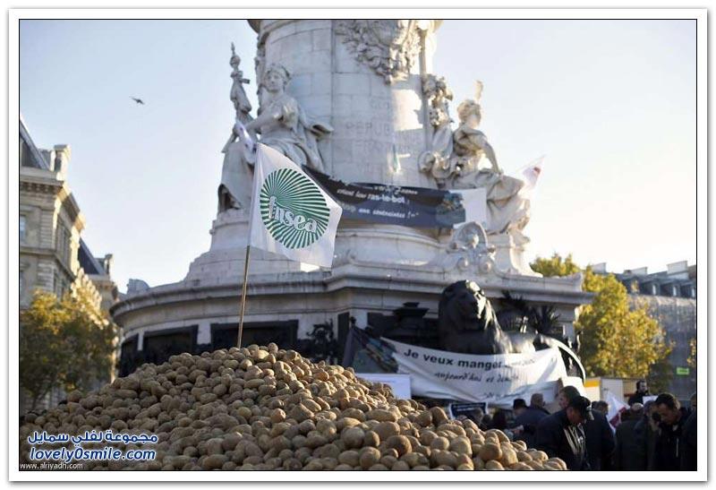 احتجاج البطاطس في فرنسا