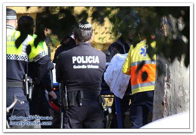 متطفل يقفز داخل قفص الأسود في حديقة برشلونة