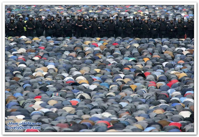 أفضل صور العام في أوروبا 2014م