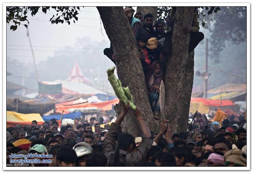 مهرجان جاديماي