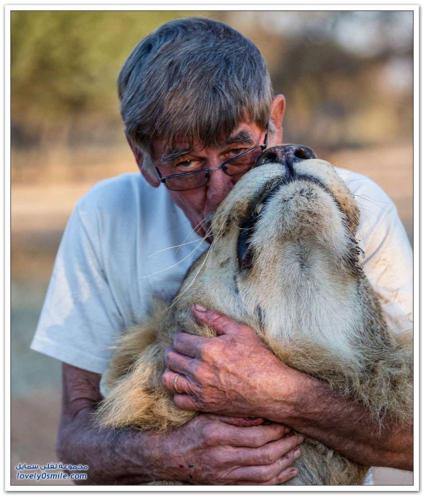 رجل يعيش مع أسد منذ 11 عاما في علاقة صداقة حميمة