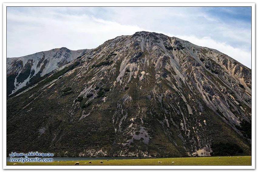 جولة على شرق نيوزيلندا