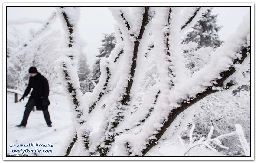 الثلوج حول العالم