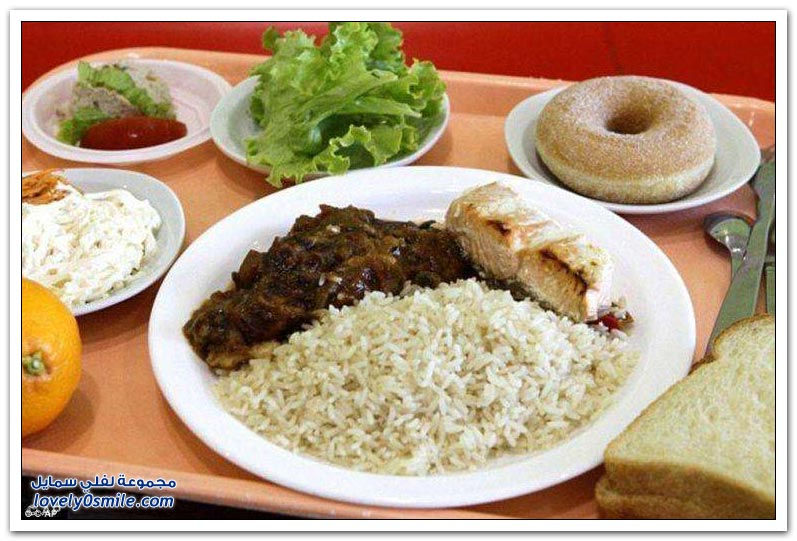 School-meals-from-different-parts-of-the-world-17.jpg