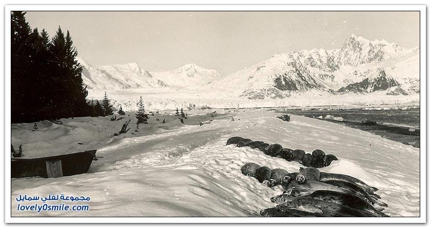 صور قبل 100 سنة تظهر تراجع الأنهار الجليدية