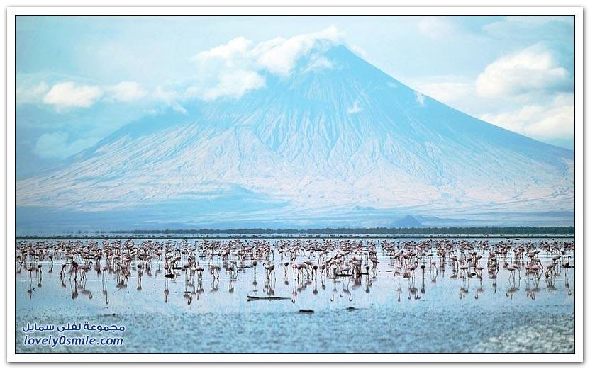 بحيرة النطرون في تنزانيا