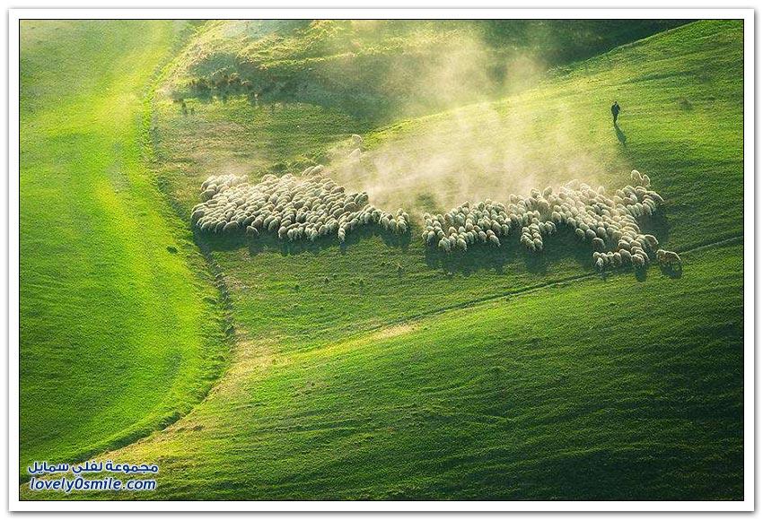 مراعي توسكانا في إيطاليا