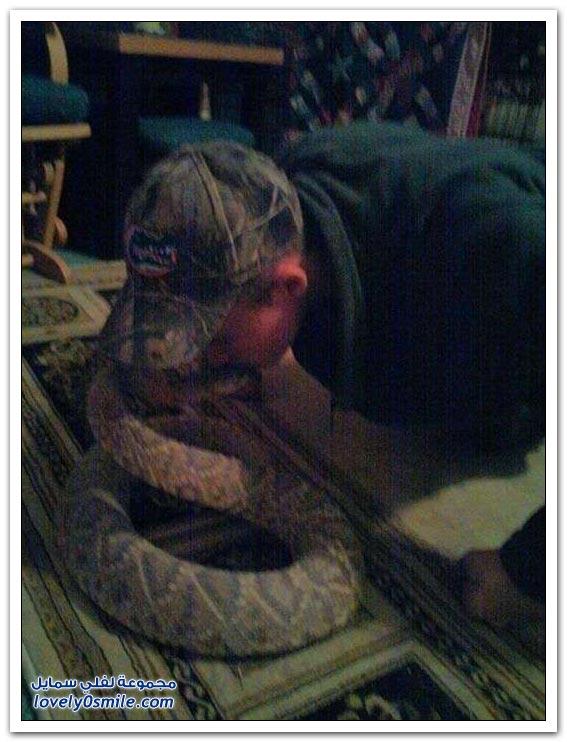مُحاولة تقبيل رأس الثعبان تنتهي بمأساة