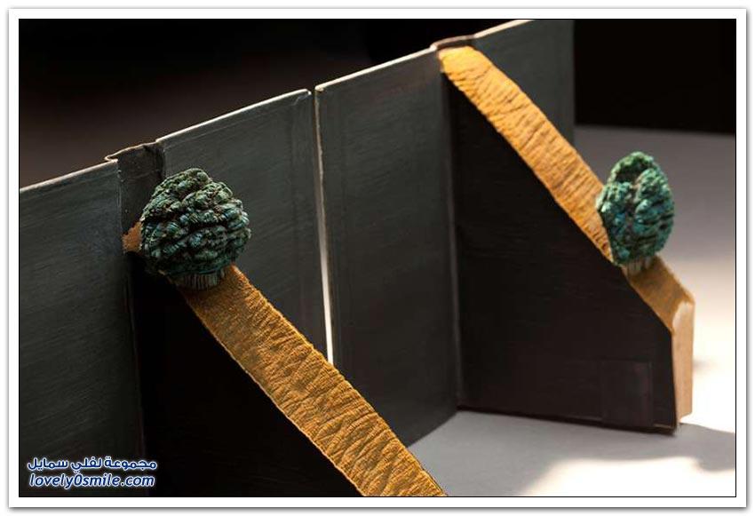 فنان عبقري ينحت الكتب على شكل جبال البرازيل