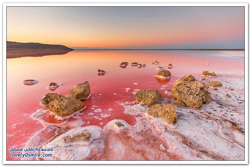 البحيرة الوردية المالحة